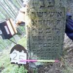 25 m Jehuda Löb Seew