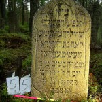 55 f Jungfrau Rosche? Lea Jehuda Westermann