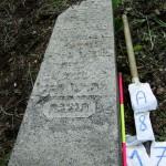 A08.17 Yehuda Vater: Naftate HaLevi Gorevich