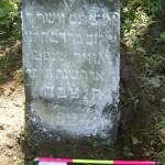 12 Reb Shalom, son of Reb  Dov HaLevi Novik