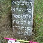 71 Reb Tobiah-Meir,son of Reb Yehuda Halevi